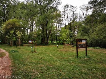 Foto: Mestský park v Prievidzi sa rozvíja vďaka novým projektom 10
