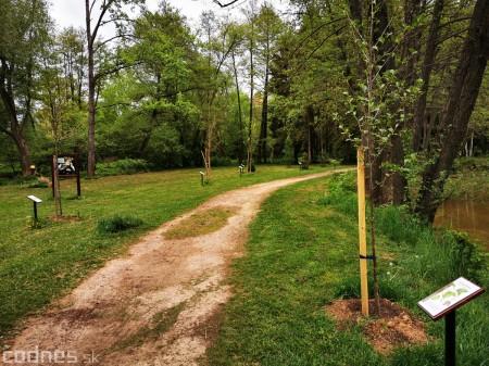 Foto: Mestský park v Prievidzi sa rozvíja vďaka novým projektom 13