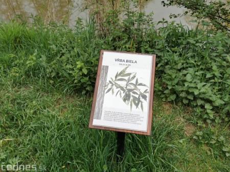 Foto: Mestský park v Prievidzi sa rozvíja vďaka novým projektom 14