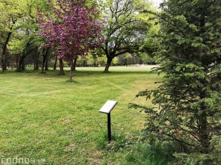 Foto: Mestský park v Prievidzi sa rozvíja vďaka novým projektom 17