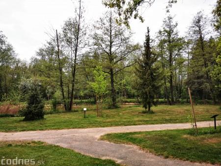 Foto: Mestský park v Prievidzi sa rozvíja vďaka novým projektom 18