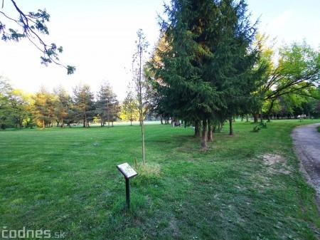 Foto: Mestský park v Prievidzi sa rozvíja vďaka novým projektom 21