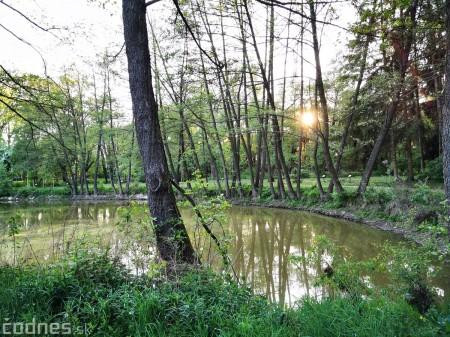 Foto: Mestský park v Prievidzi sa rozvíja vďaka novým projektom 23