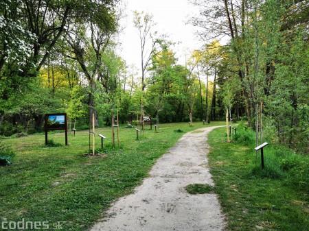 Foto: Mestský park v Prievidzi sa rozvíja vďaka novým projektom 25