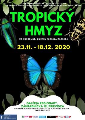 Tropický hmyz