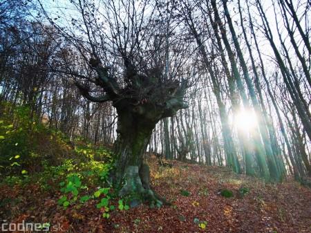 Foto a video: Jesenná Jančekova skala 4