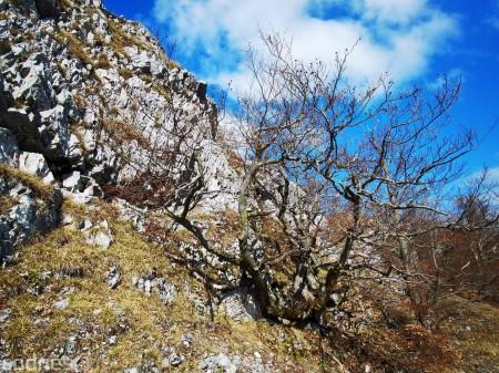 Foto a video: Temešská skala - okres Prievidza - tip na výlet - túra 23