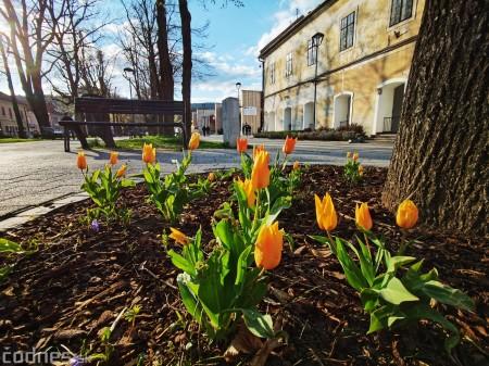 Foto: Rozkvitnuté Bojnice a okolie Bojnického zámku 0
