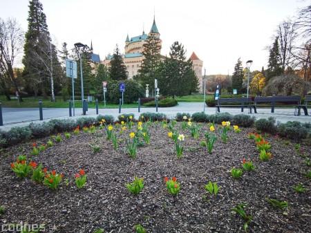 Foto: Rozkvitnuté Bojnice a okolie Bojnického zámku 3