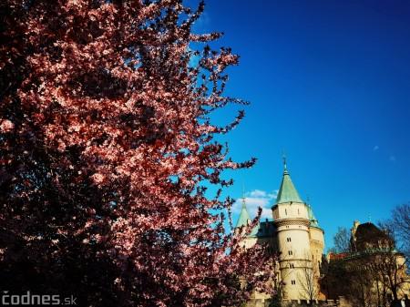 Foto: Rozkvitnuté Bojnice a okolie Bojnického zámku 4