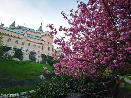 Foto: Rozkvitnuté Bojnice a okolie Bojnického zámku 5