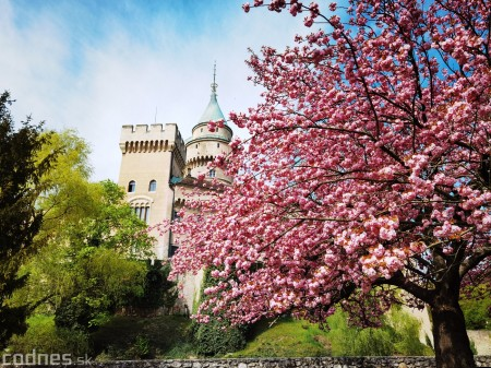 Foto: Rozkvitnuté Bojnice a okolie Bojnického zámku 6