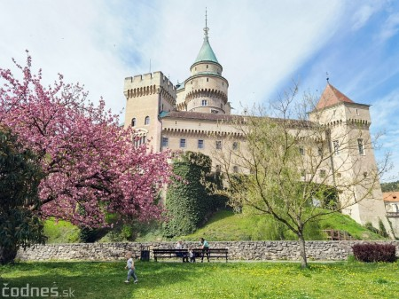Foto: Rozkvitnuté Bojnice a okolie Bojnického zámku 7