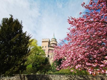 Foto: Rozkvitnuté Bojnice a okolie Bojnického zámku 11