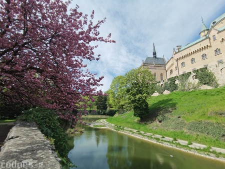 Foto: Rozkvitnuté Bojnice a okolie Bojnického zámku 16