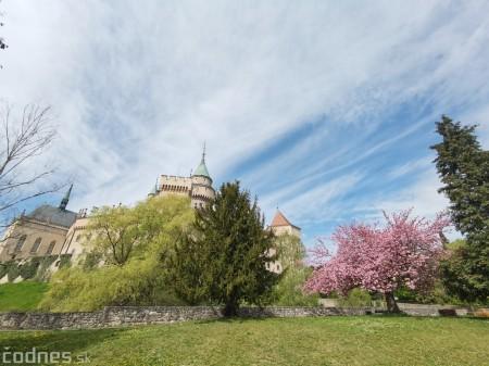 Foto: Rozkvitnuté Bojnice a okolie Bojnického zámku 19