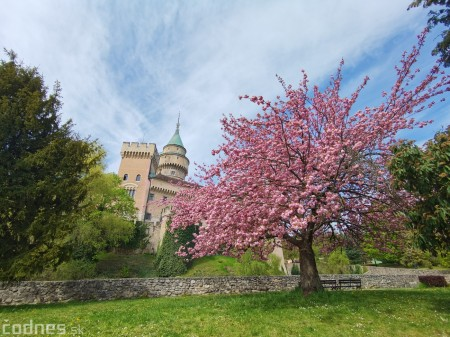 Foto: Rozkvitnuté Bojnice a okolie Bojnického zámku 22