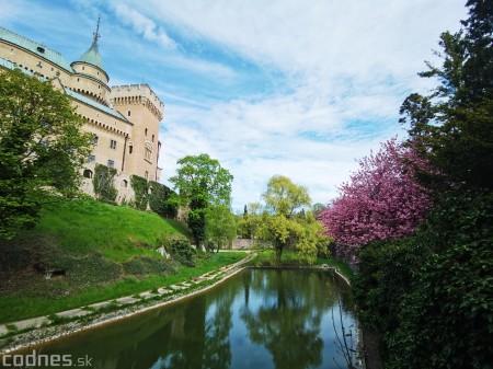 Foto: Rozkvitnuté Bojnice a okolie Bojnického zámku 24