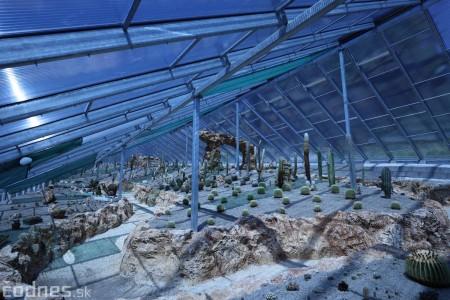 Foto a video: V Bojniciach otvorili novú unikátnu atrakciu Botany Park Bojnice (kaktusárium) 4