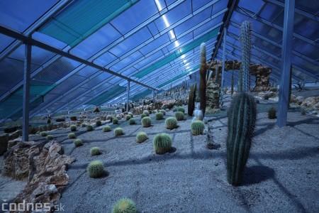 Foto a video: V Bojniciach otvorili novú unikátnu atrakciu Botany Park Bojnice (kaktusárium) 5