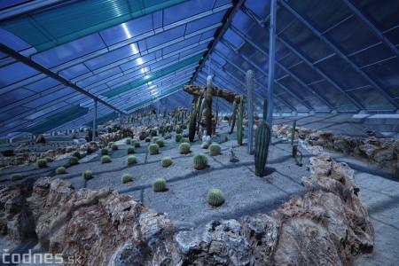 Foto a video: V Bojniciach otvorili novú unikátnu atrakciu Botany Park Bojnice (kaktusárium) 6