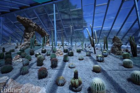 Foto a video: V Bojniciach otvorili novú unikátnu atrakciu Botany Park Bojnice (kaktusárium) 11