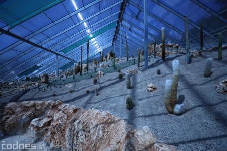 Foto a video: V Bojniciach otvorili novú unikátnu atrakciu Botany Park Bojnice (kaktusárium) 12