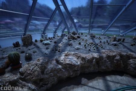Foto a video: V Bojniciach otvorili novú unikátnu atrakciu Botany Park Bojnice (kaktusárium) 15