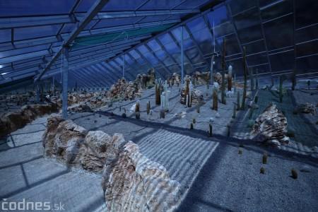 Foto a video: V Bojniciach otvorili novú unikátnu atrakciu Botany Park Bojnice (kaktusárium) 16