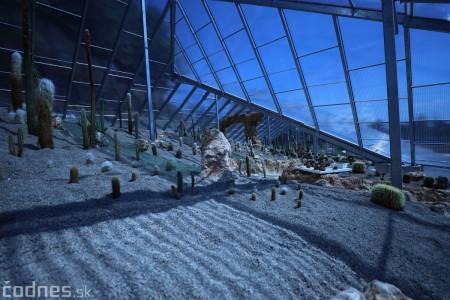 Foto a video: V Bojniciach otvorili novú unikátnu atrakciu Botany Park Bojnice (kaktusárium) 17