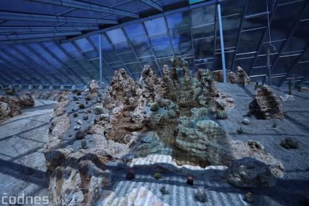 Foto a video: V Bojniciach otvorili novú unikátnu atrakciu Botany Park Bojnice (kaktusárium) 18