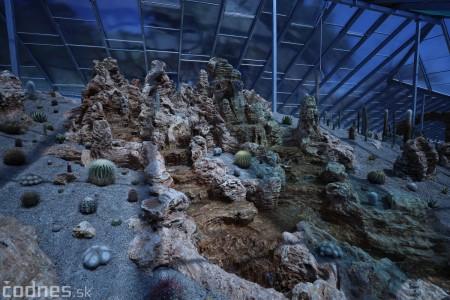 Foto a video: V Bojniciach otvorili novú unikátnu atrakciu Botany Park Bojnice (kaktusárium) 19