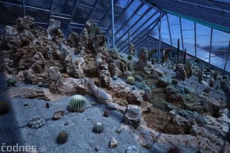 Foto a video: V Bojniciach otvorili novú unikátnu atrakciu Botany Park Bojnice (kaktusárium) 20