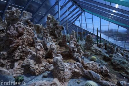 Foto a video: V Bojniciach otvorili novú unikátnu atrakciu Botany Park Bojnice (kaktusárium) 21
