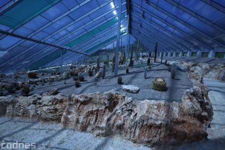 Foto a video: V Bojniciach otvorili novú unikátnu atrakciu Botany Park Bojnice (kaktusárium) 22