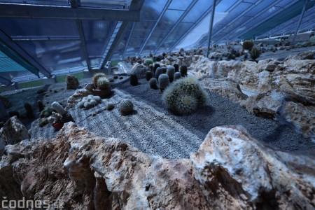 Foto a video: V Bojniciach otvorili novú unikátnu atrakciu Botany Park Bojnice (kaktusárium) 23