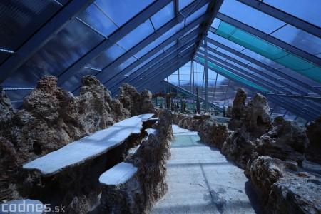 Foto a video: V Bojniciach otvorili novú unikátnu atrakciu Botany Park Bojnice (kaktusárium) 24