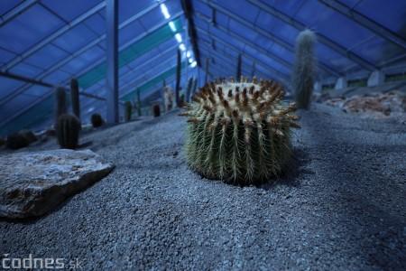 Foto a video: V Bojniciach otvorili novú unikátnu atrakciu Botany Park Bojnice (kaktusárium) 26