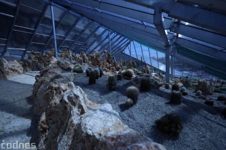 Foto a video: V Bojniciach otvorili novú unikátnu atrakciu Botany Park Bojnice (kaktusárium) 27