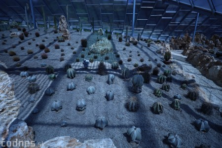 Foto a video: V Bojniciach otvorili novú unikátnu atrakciu Botany Park Bojnice (kaktusárium) 28