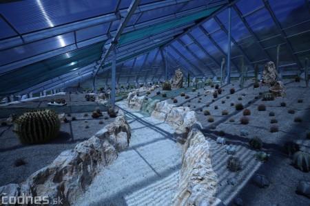Foto a video: V Bojniciach otvorili novú unikátnu atrakciu Botany Park Bojnice (kaktusárium) 29