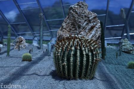 Foto a video: V Bojniciach otvorili novú unikátnu atrakciu Botany Park Bojnice (kaktusárium) 31
