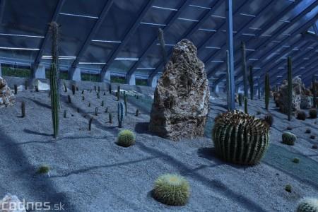 Foto a video: V Bojniciach otvorili novú unikátnu atrakciu Botany Park Bojnice (kaktusárium) 32