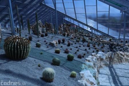 Foto a video: V Bojniciach otvorili novú unikátnu atrakciu Botany Park Bojnice (kaktusárium) 33