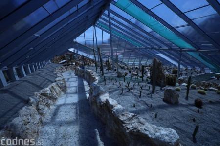 Foto a video: V Bojniciach otvorili novú unikátnu atrakciu Botany Park Bojnice (kaktusárium) 35