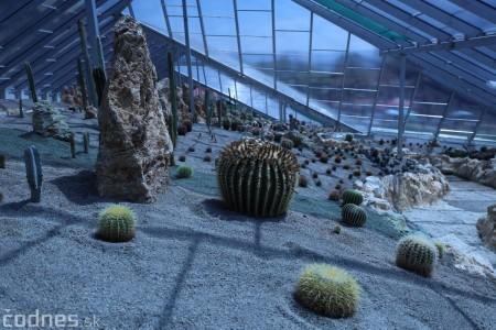 Foto a video: V Bojniciach otvorili novú unikátnu atrakciu Botany Park Bojnice (kaktusárium) 36