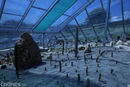 Foto a video: V Bojniciach otvorili novú unikátnu atrakciu Botany Park Bojnice (kaktusárium) 37