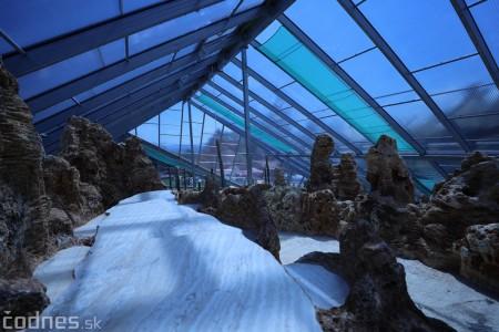 Foto a video: V Bojniciach otvorili novú unikátnu atrakciu Botany Park Bojnice (kaktusárium) 41