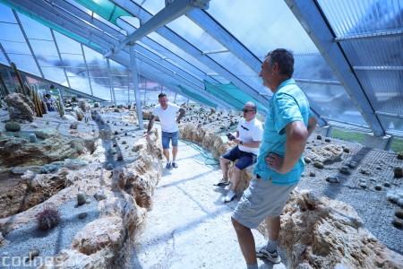 Foto a video: V Bojniciach otvorili novú unikátnu atrakciu Botany Park Bojnice (kaktusárium) 42