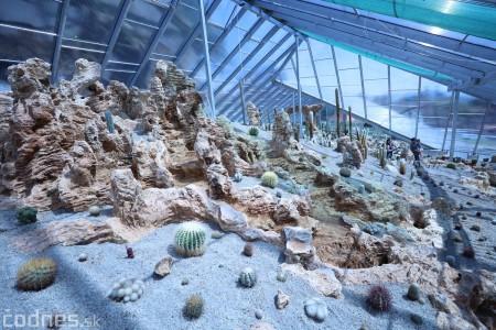 Foto a video: V Bojniciach otvorili novú unikátnu atrakciu Botany Park Bojnice (kaktusárium) 43